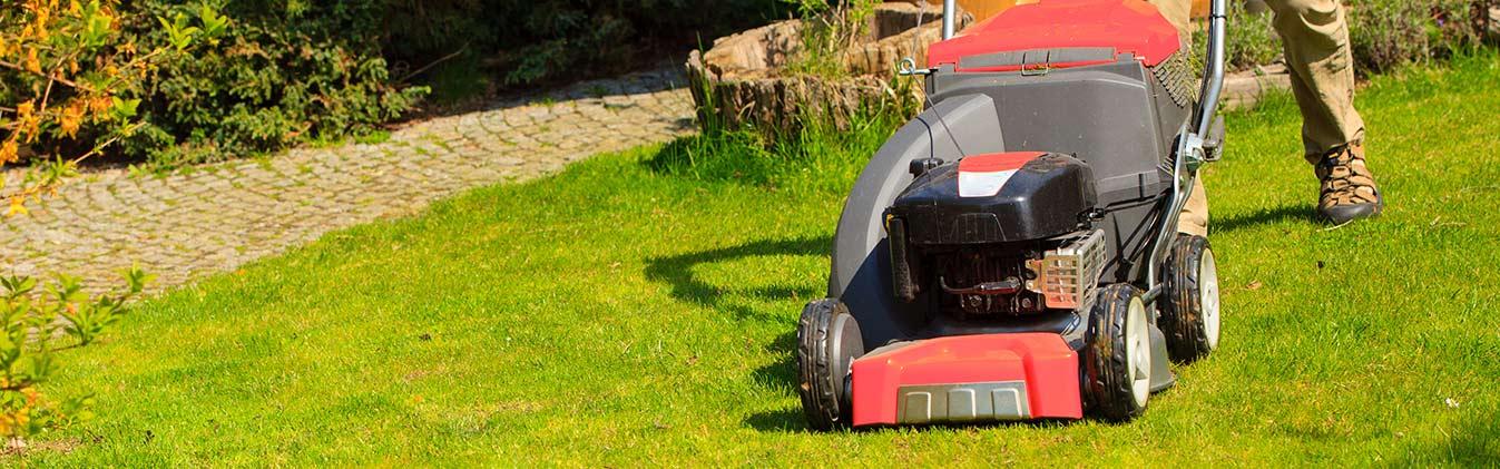 Perfect gardening help for your garden